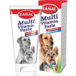 Multivitamin pasta for dogs, упаковка 100г
