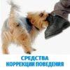 Средства коррекции поведения собаки