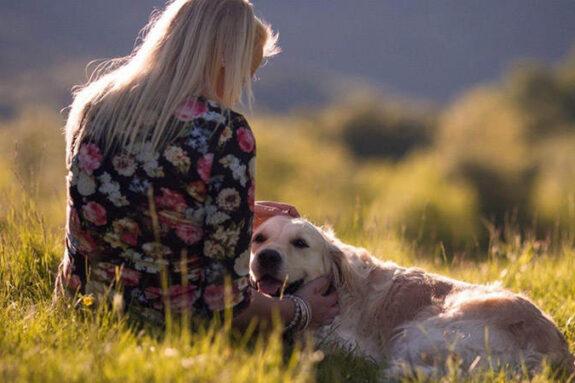 Лучшие собаки для эмоциональной поддержки